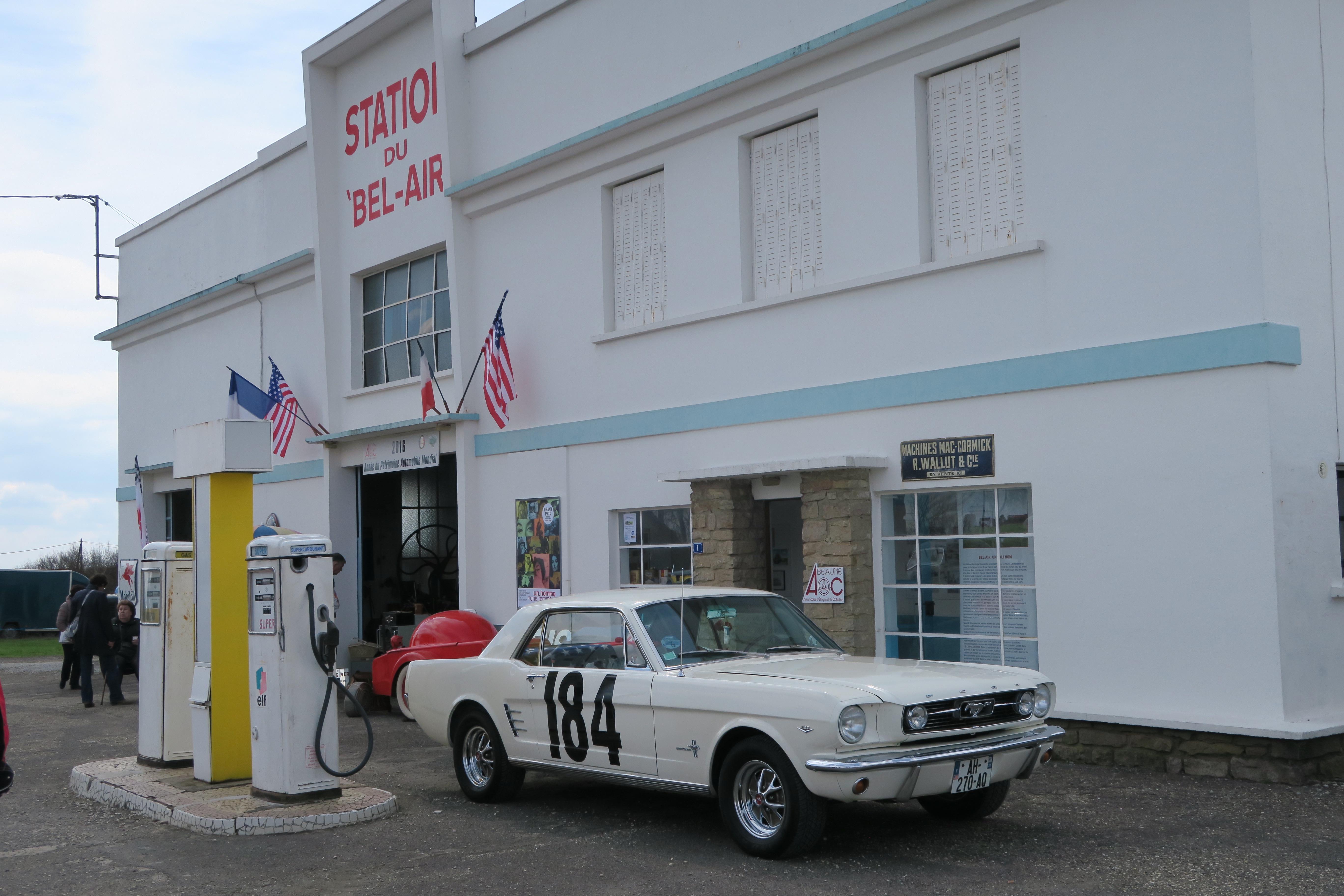 Mustang 184
